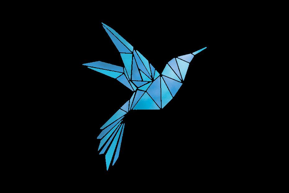 physiotherapie, vogel, logo